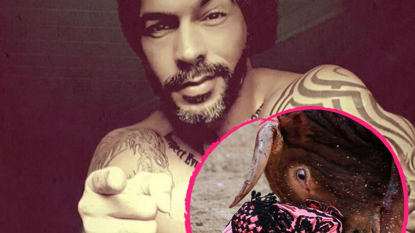 Einsatz für die Tiere: Aurelio Savina hasst Stierkämpfe!