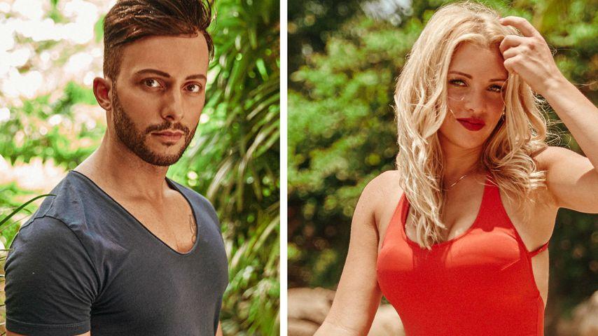 Dschungelcamp-Gerüchte: Trifft Domenico auf seine Ex Evelyn?
