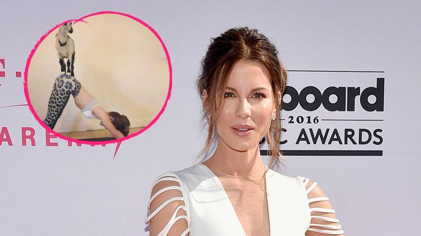 Mit Ziege beim Yoga: Kate Beckinsale feiert verrückten B-Day