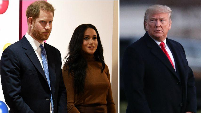 Harry und Meghan wollen wegen Trump nicht nach L.A.