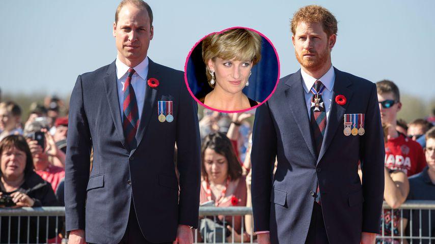 Prinz Williams Kampf um Diana-Interview: Hilft Harry nicht?