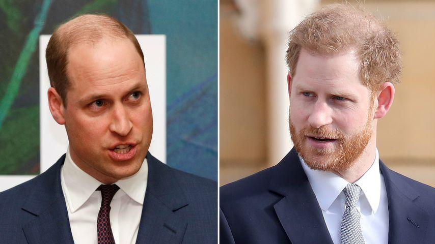 Kam es deshalb zum Streit zwischen William und Harry?