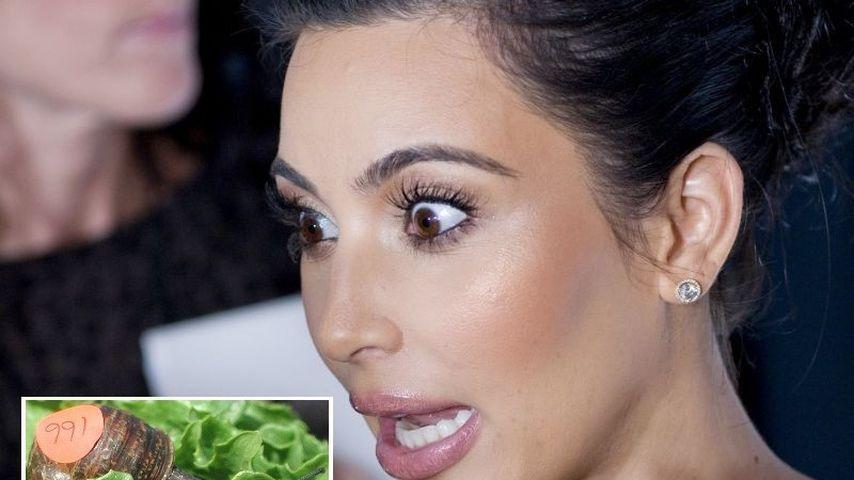 Kim Kardashians Hund starb an Schneckenschleim