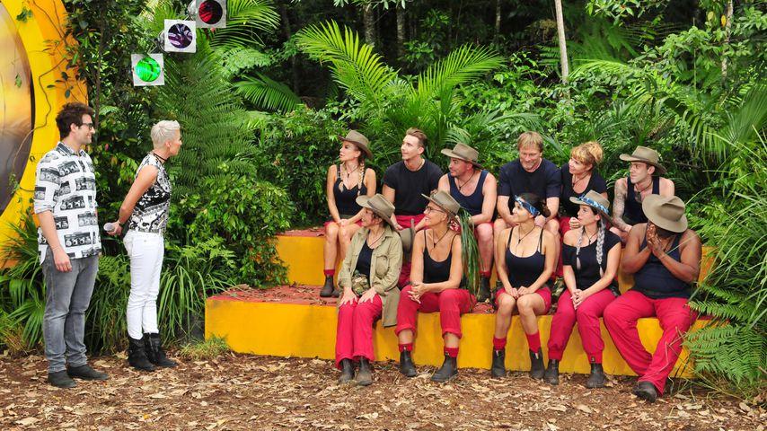 Daniel Hartwich und Sonja Zietlow mit den Dschungelcamp-Kandidaten in der siebten Folge