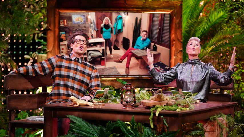 Daniel Hartwich und Sonja Zietlow mit Kandidatengruppe zwei in der Dschungelshow