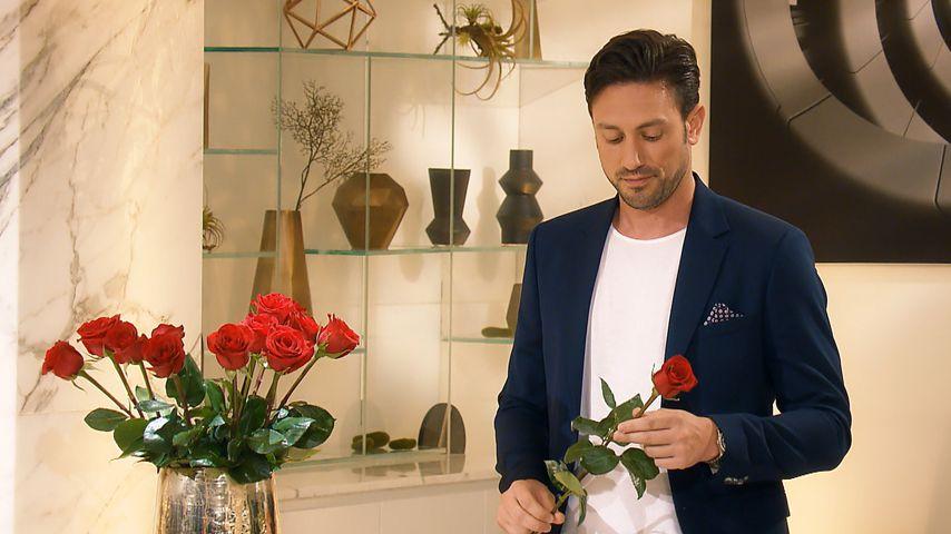 """""""Der Bachelor"""" Daniel Völz in der Nacht der Rosen"""