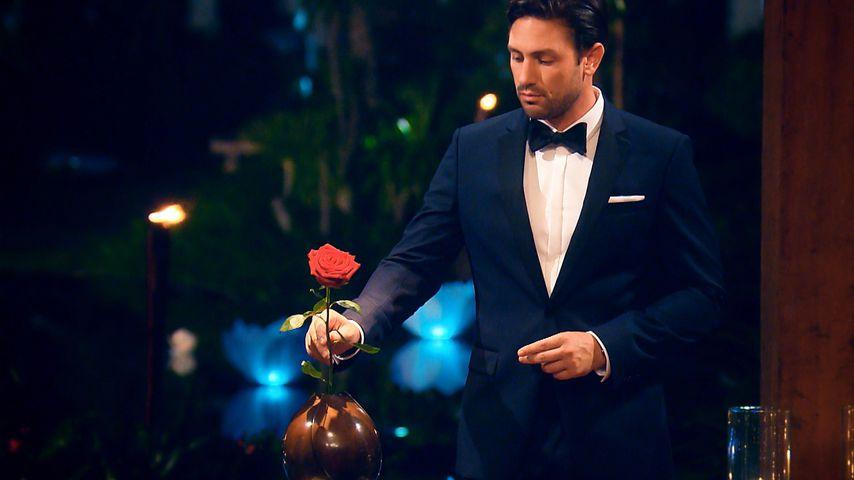 Bachelor Daniel Völz in der letzten Nacht der Rosen