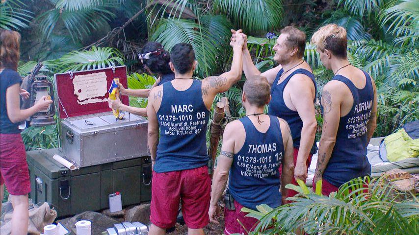 Dschungel-Finale steht fest: Diese Drei kämpfen um die Krone