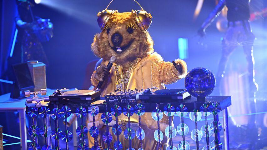 """Irrer Rap: Ist """"The Masked Singer""""-Quokka Thomas Gottschalk?"""