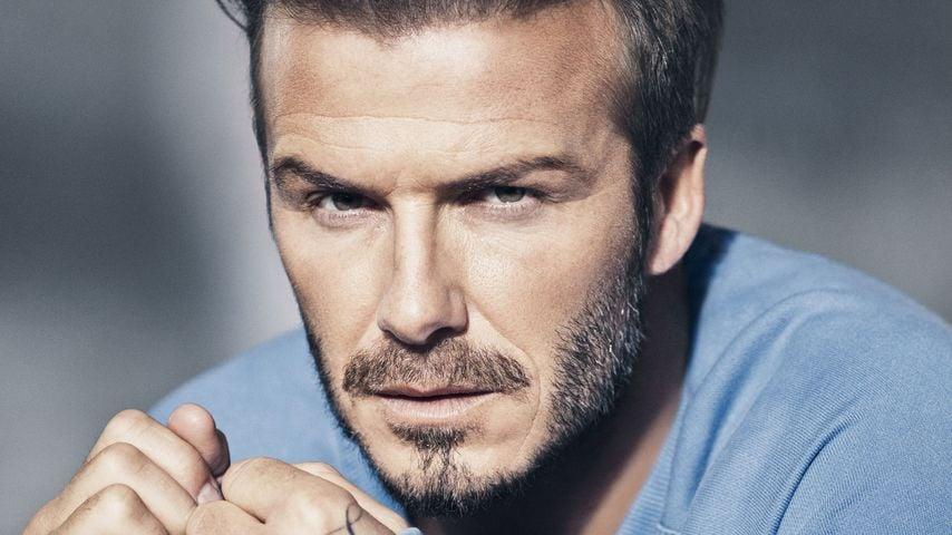 Was für ein Jahr: David Beckham fährt auf der Erfolgsschiene