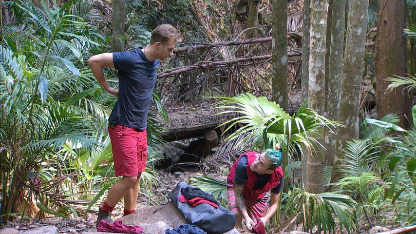 David Friedrich und Daniele Negroni im Dschungelcamp, Tag 9