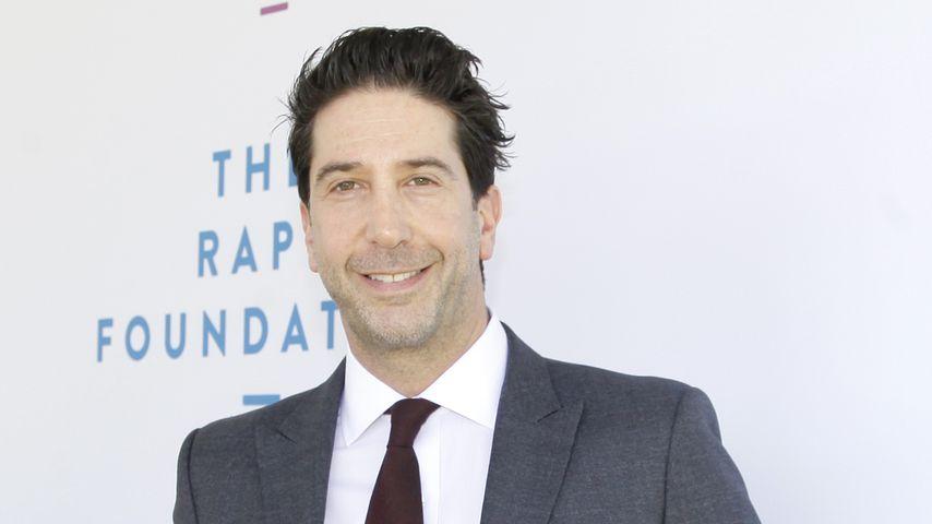 David Schwimmer, 2019