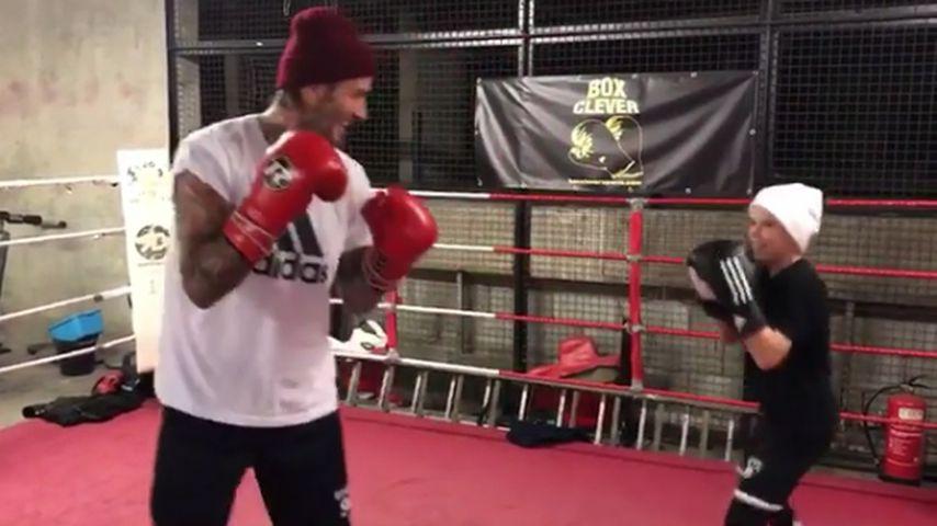 Profi im Boxring: Hier macht Cruz Beckham Papa David platt!