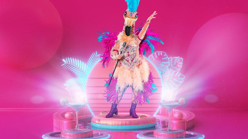 "Finale: Alle Indizien zum ""The Masked Singer""-Flamingo"