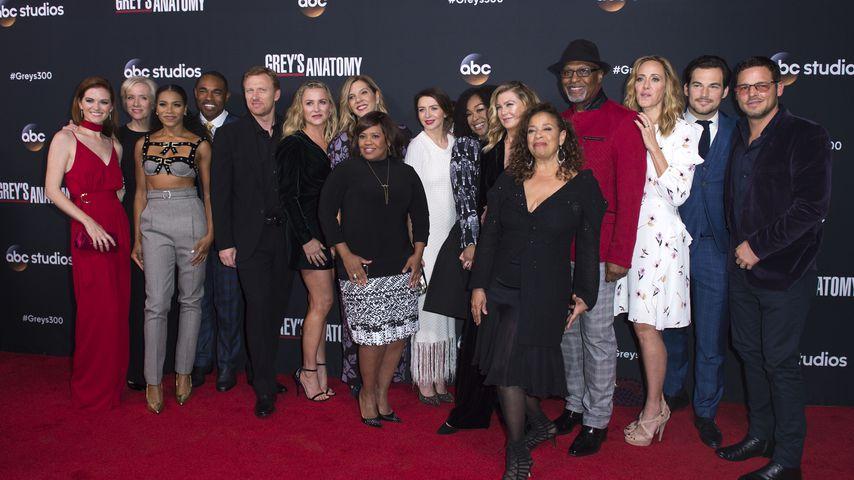 """Der """"Grey's Anatomy""""-Cast im Jahr 2017"""