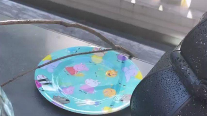 Der Stock Lollo am Esstisch der Hummels