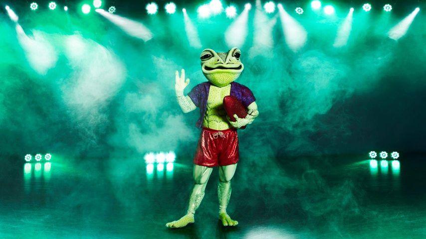 """Der """"The Masked Singer""""-Frosch"""