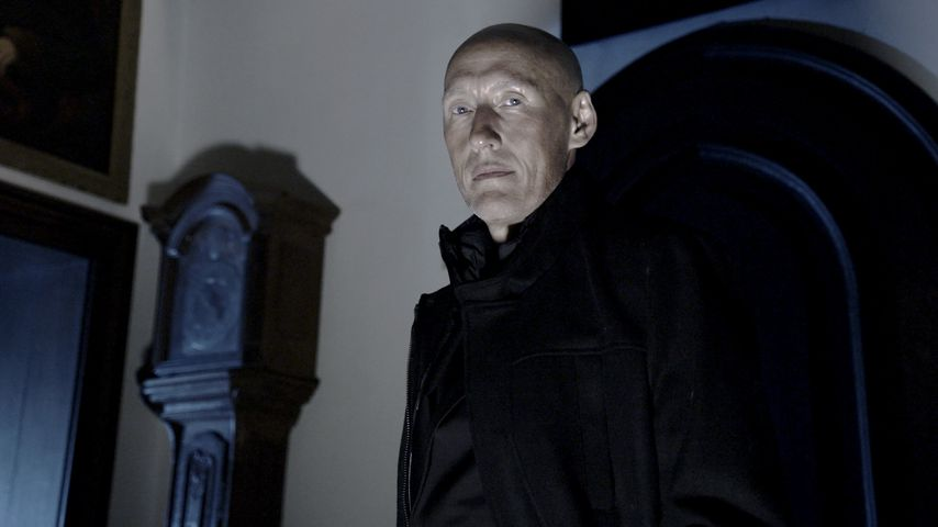 Detlef Bothe, Schauspieler