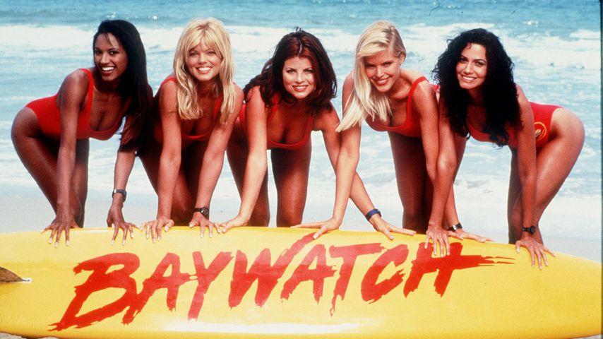"""Was ist aus den sexy """"Baywatch""""-Schönheiten geworden?"""