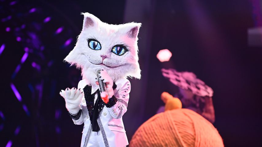 "Die ""The Masked Singer""-Katze"