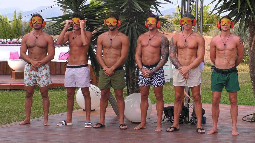 """Die """"Love Island""""-Boys"""