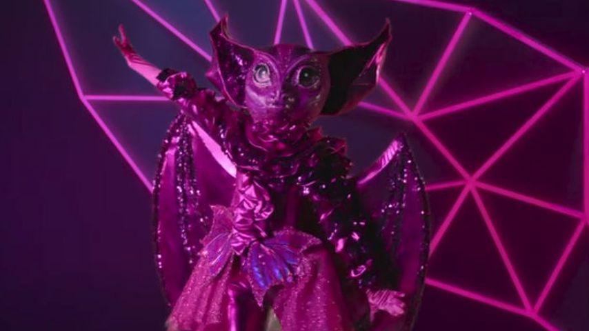 """Die """"The Masked Singer""""-Fledermaus"""