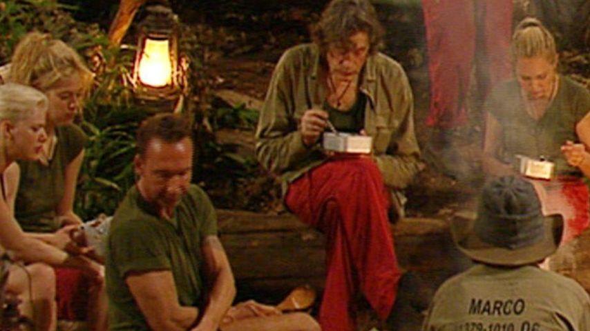 Dschungel Tag 6: Wer bekommt eure Urwald-Krone?