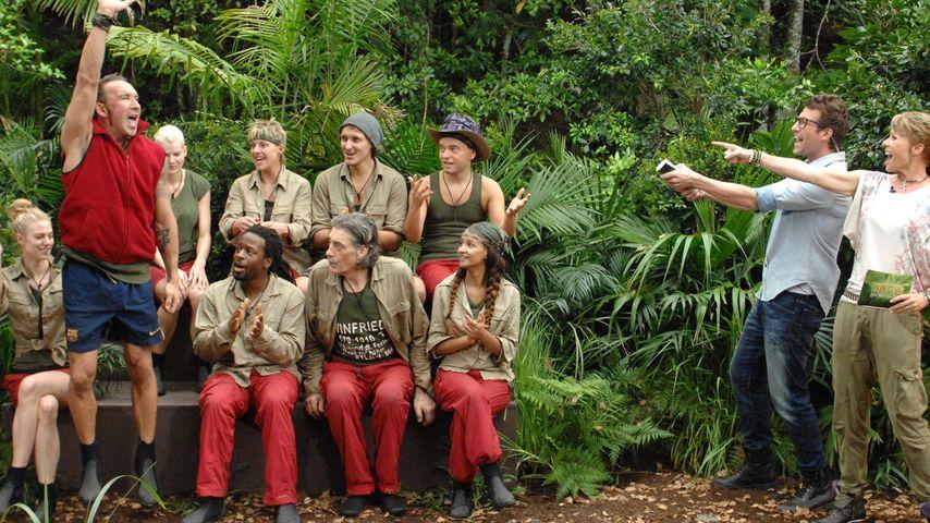 Auch an Tag 10: Dschungel-Camper holen Tagessieg