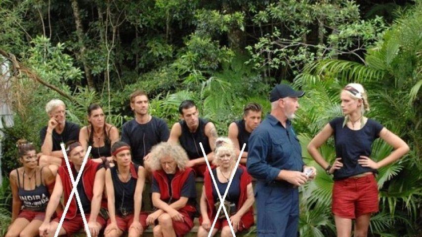 Der nächste Dschungelkandidat musste gehen