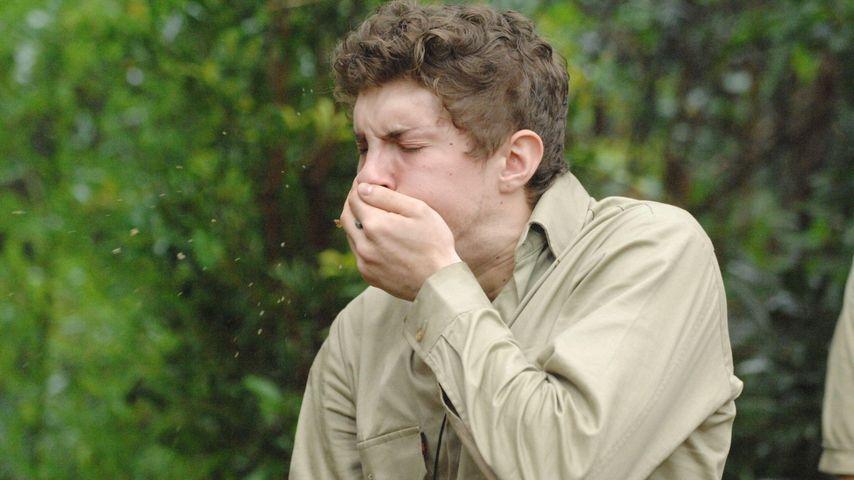 Dschungelküken Joey verspeist eine Kuheuter-Zitze!