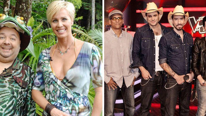 Dschungelcamp 2012 lässt The Voice erblassen