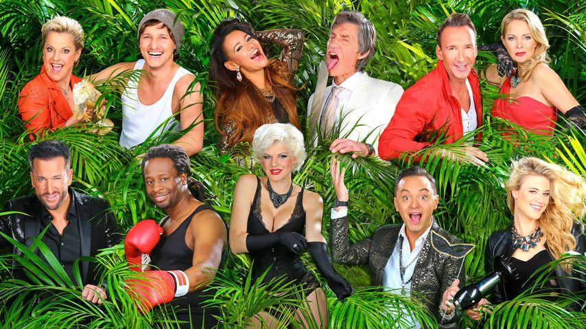 Sommer-Camp: Wer soll noch mal in den Dschungel?