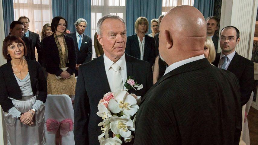 Sturm der Liebe: Saalfeld-Hochzeit wird zum Fiasko