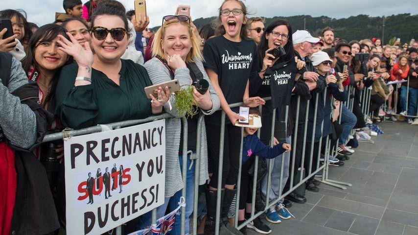Fan-Plakat für Meghan in Wellington, Neuseeland