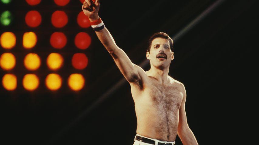 Freddie Mercury im Mai 1982