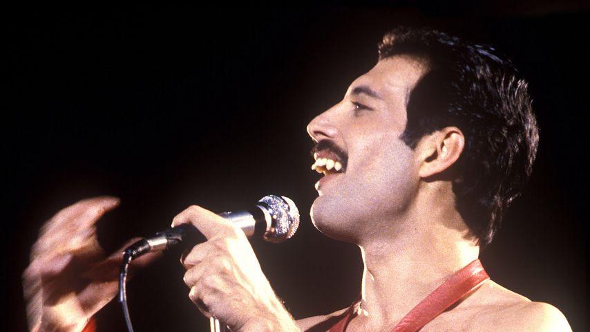 Mitten in München: Freddie Mercurys Turtel-Bude zum Verkauf!