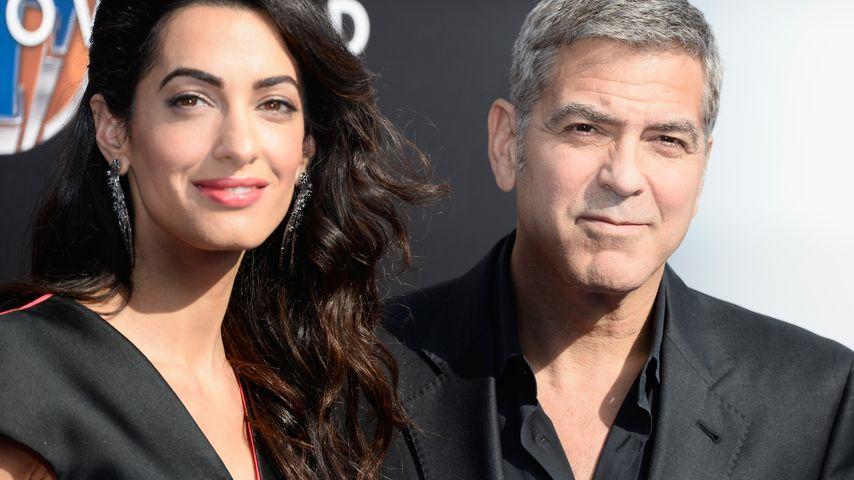 Goldene Ehe-Regel: George Clooney & Amal haben Deal