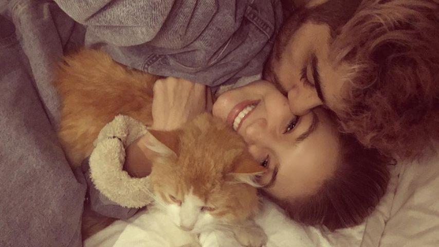 Gigi Hadid und Zayn Malik