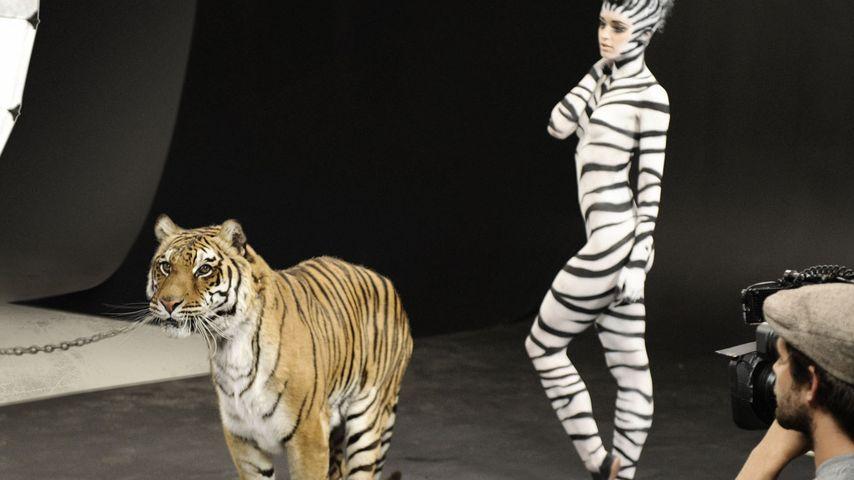 GNTM: Dieses Mädchen flog aus dem Model-Zoo