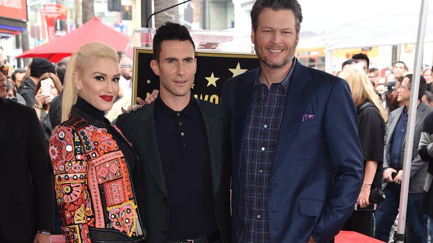Gwen Stefani, Adam Levine und Blake Shelton auf dem Walk of Fame, 2017