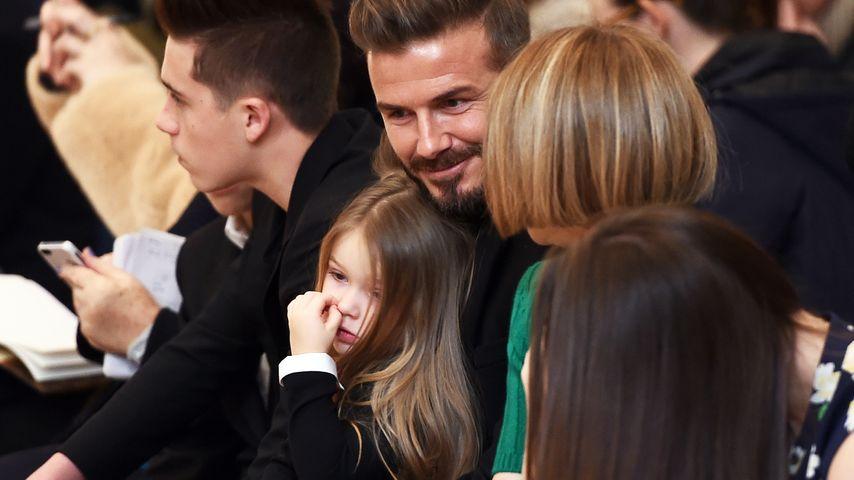 Front Row: Harper Beckham popelt auf Papas Schoß