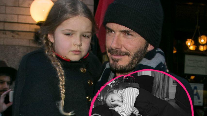 Niedliches Nickerchen: Harper Beckham (6) hat schon Jetlag!