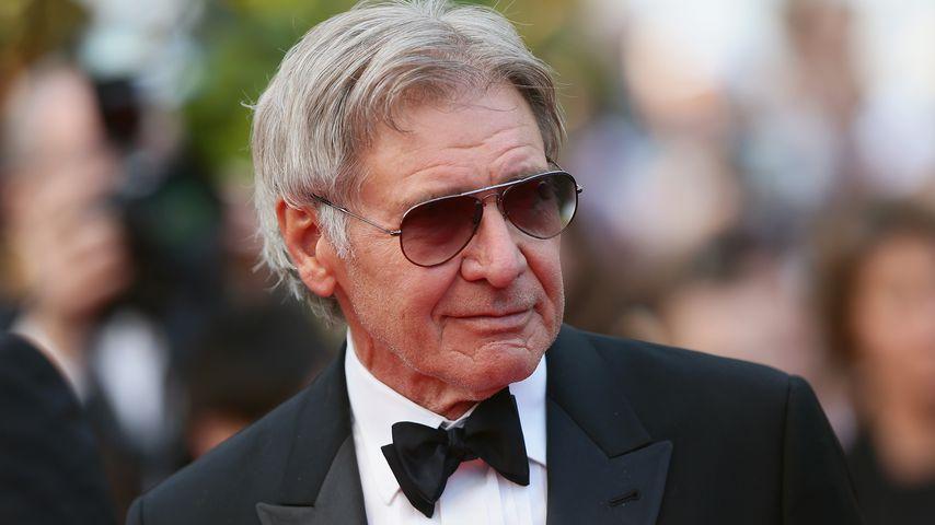 Nach Fast-Crash: Harrison Ford bangt um seinen Flugschein