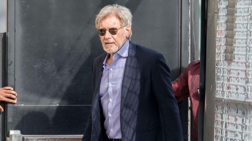 Nach Flugzeug-Absturz: Harrison Ford ist wieder in der Luft
