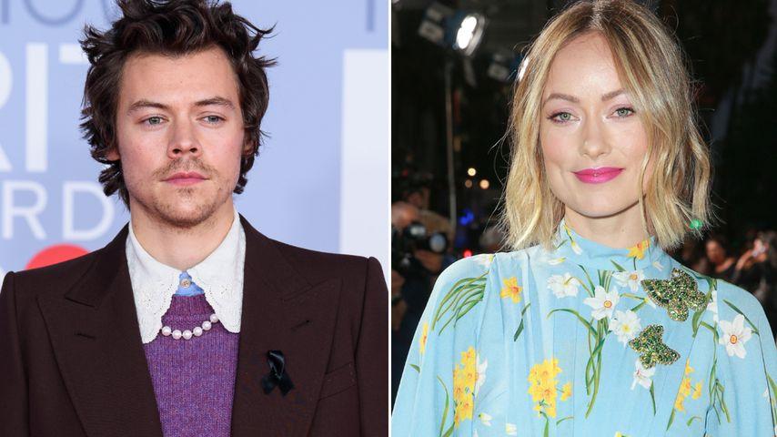 Flirteten Harry Styles und Olivia Wilde schon vor Trennung?