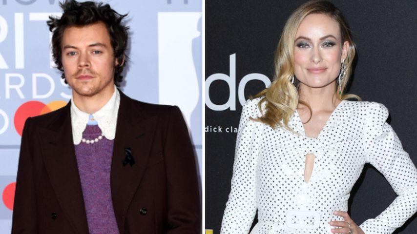 Sind Harry Styles und Olivia Wilde das neue Promi-Traumpaar?