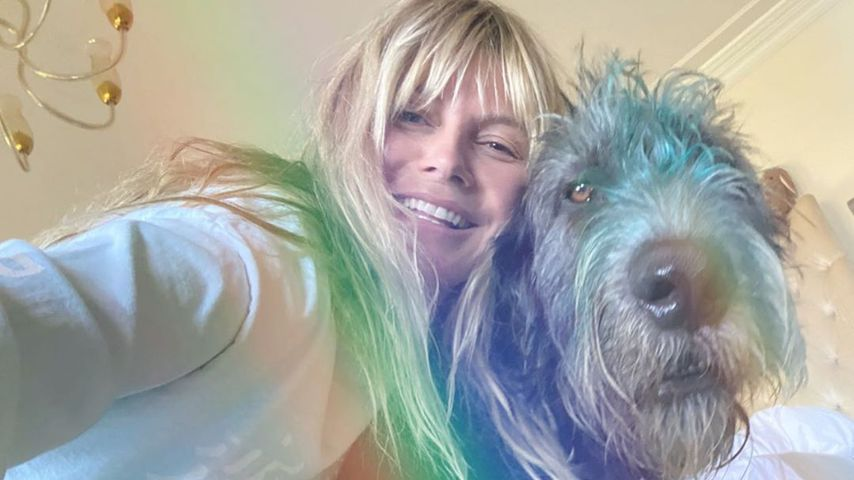 Heidi Klum mit ihrem Hund Anton im Juli 2020