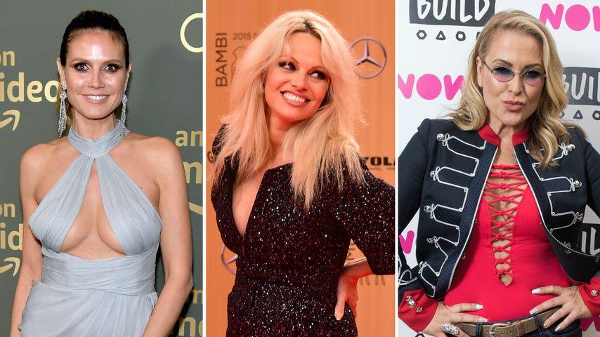 Wie Pam Anderson: Auch diese Stars liebten ihren Bodyguard