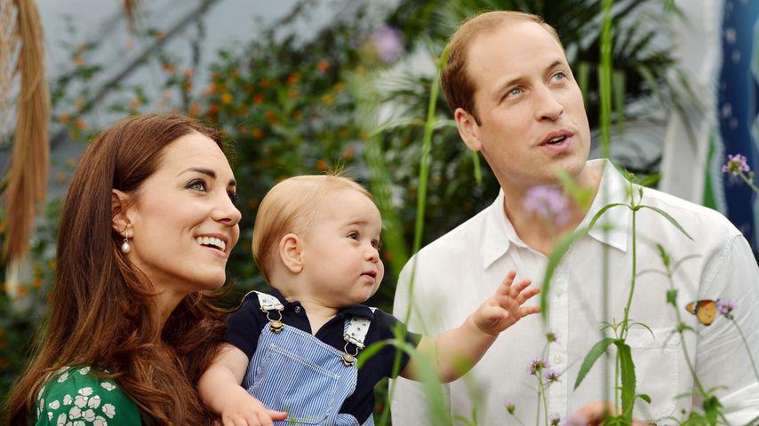 Prinz William und Kate sorgen sich um Sohn Georges Zukunft