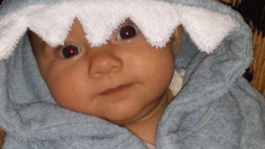"Hai-Alarm! Ian Ziering zeigt sein ""Sharknado""-Baby"